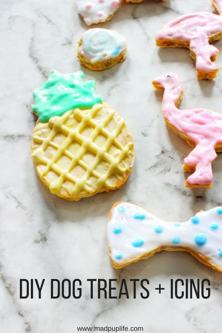 Diy Dog Treats Icing Homemade Dog Cookies Dog Biscuit Recipes