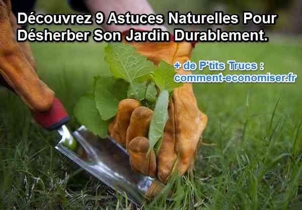 nine Façons Naturelles de Tuer les Mauvaises Herbes.