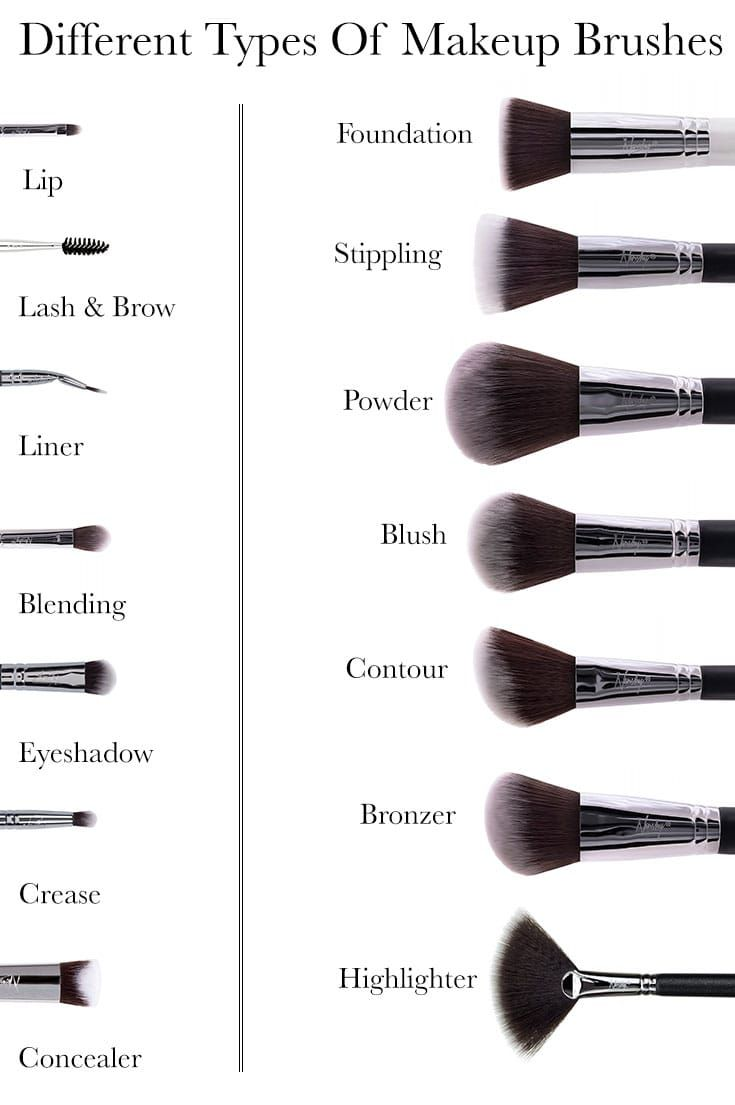 14 Different Types Of Makeup Brushes And Their Uses Makeup Brush