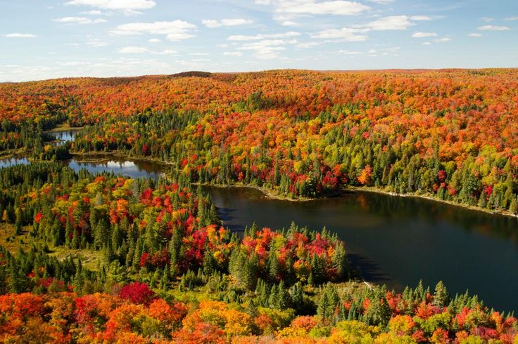 10 magical reasons to visit Algonquin Park in the fall - Canadian Living