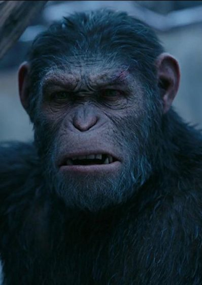 Watch War for the Planet of the Apes Full Movie Online War for the Planet of the Apes Full Movie Streaming Online in HD-720p Video Quality