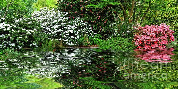 A #pretty and #colorful spring garden surrounding a pond with the plants and #azaleas #reflecting on the #water. #Spring #Garden around #Pond by #Kaye_Menner #Photography Quality Prints Cards Products with a money-back guarantee at: https://kaye-menner.pixels.com/featured/spring-garden-around-pond-by-kaye-menner-kaye-menner.html