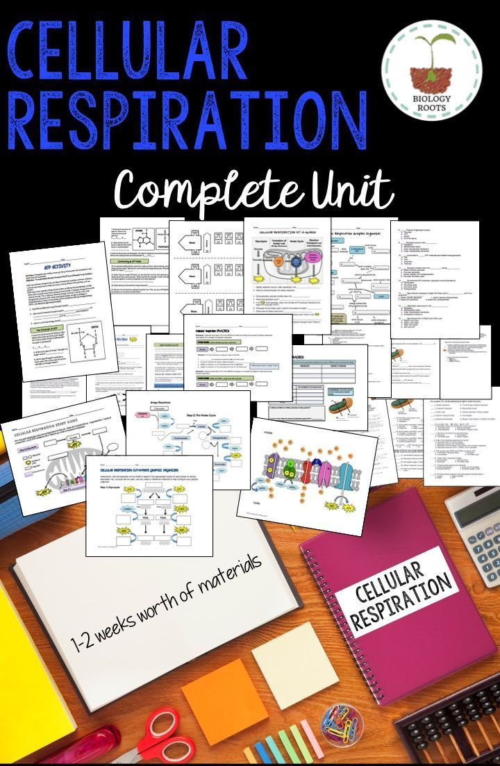 Cellular Respiration Bundle Awesome Biology Resources Pinterest Science Lessons And Teaching