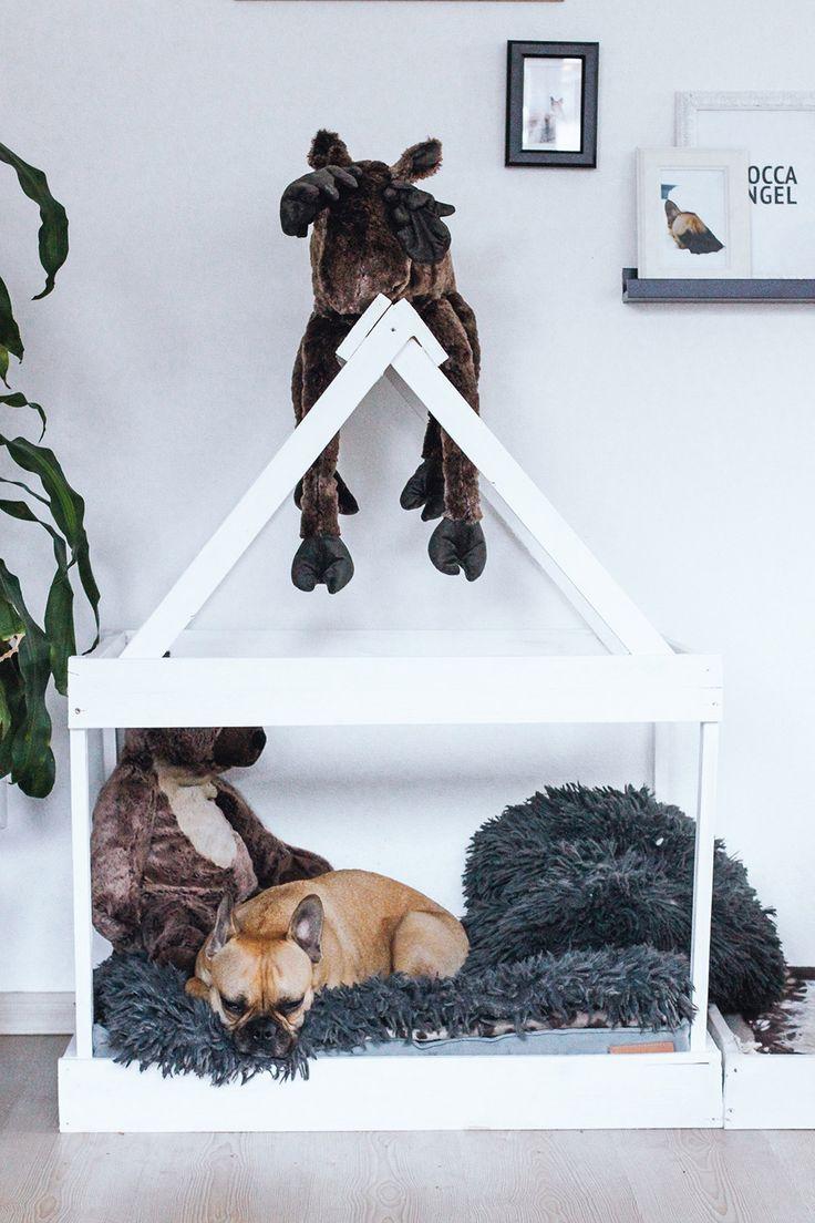 93 besten hund bilder auf pinterest haustiere hundeh tten und katzenliebhaber. Black Bedroom Furniture Sets. Home Design Ideas