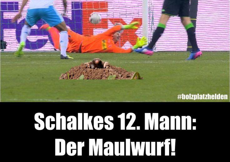 Schalke Spiel gegen Gladbach in der Euro League 2:2 und ist damit eine Runde weiter. Der 2:1 Anschlusstreffer von Schalke war dabei schon kurios. Wir haben nun exklusives Bildmaterial erhalten dass Schalke noch einen 12. Mann auf dem Feld hatte...  #bolzplatzhelden #s04#bmg #bmgs04 #schalke #maulwurf #uel