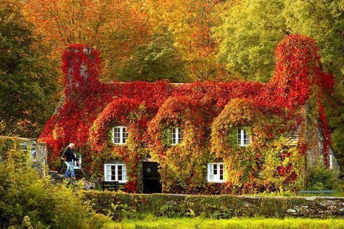 Cottage In Autumn Color Of Autumn Pinterest
