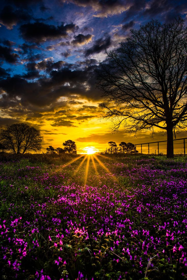 Morning Sun by Zach Ashcraft on 500px
