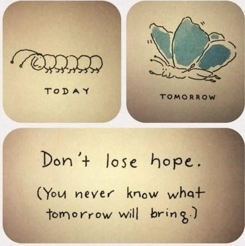 """""""Don't lose hope. (You never know what tomorrow will bring)."""""""