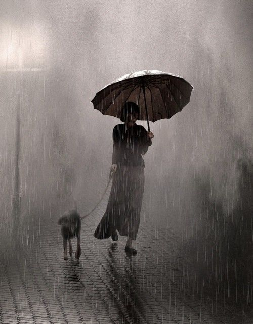 If only Rainy days were this romantic....Rainy day