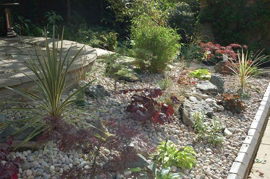 19 best desert landscaping front yard images on pinterest for Low maintenance garden design