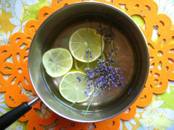 Lemon, lavender and witch hazel are all you'll need in this easy DIY for natural flea-repellant. While it won't kill fleas, it does a great job of keeping them from latching onto your pet in the first place.
