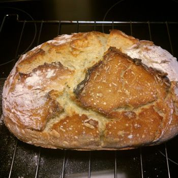 Verdens bedste brød i stegeso