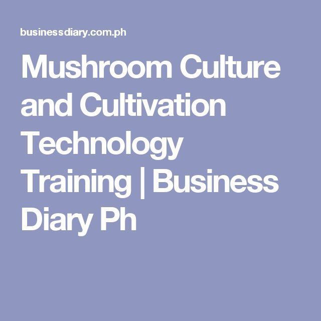 Mushroom Culture and Cultivation Technology Training   Business Diary Ph