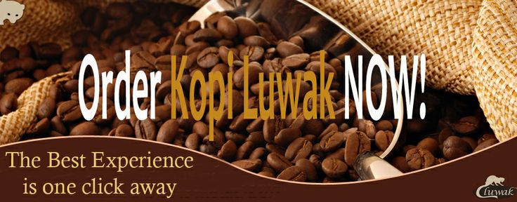 Kopi Luwak is a very expensive coffee. Most people cannot afford it. But we made it possible for everyone to enjoy this exotic coffee. Buy it from us and get 20% flat discount and pay no shipment charges!