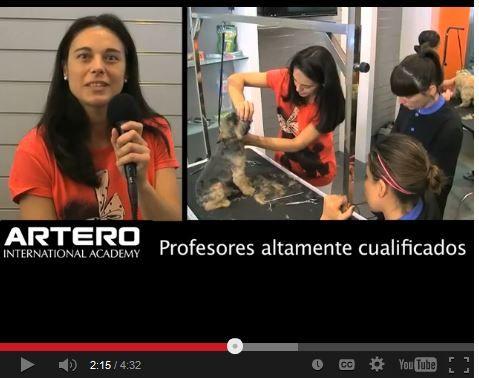Te contamos la experiencia de alumnos y profesores de Artero International Academy del curso de peluquería y estética canina.  Impartimos cursos de peluquería canina en toda España garantizando que nuestros alumnos aprendan un oficio y salgan totalmente preparados.  ¿Quieres estudiar tú también peluquería canina? Infórmate en el 93 515 00 35.  Disponemos de centros en varias ciudades de España con horarios totalmente flexibles. Varios niveles de formación y bolsa de trabajo.