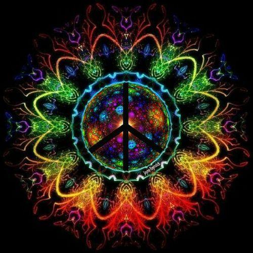 The Happy Hippies Family