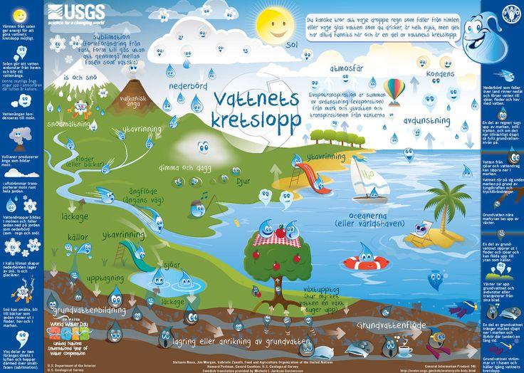 Vattnets Kretslopp för Skolo