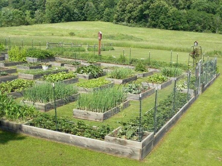 171 best garden patterns colors images on pinterest for Large vegetable garden design plans