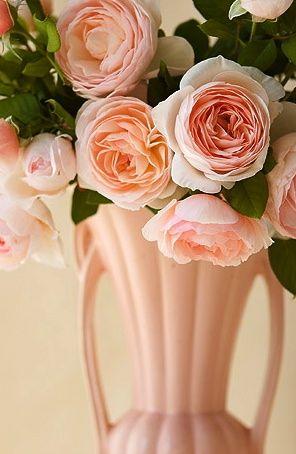 Peachy roses in gorgeous pale peach ceramic vase...