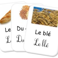 Projet du blé au pain