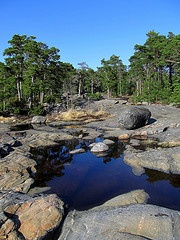 stones and water in finland