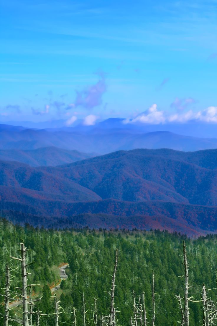 472 best great smoky mountains national park images on for Wild rivers motor lodge