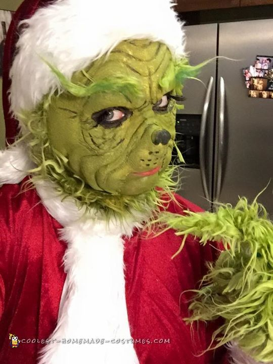 The Grinch Costume with Laytex Mask and Makeup   Grinch ...
