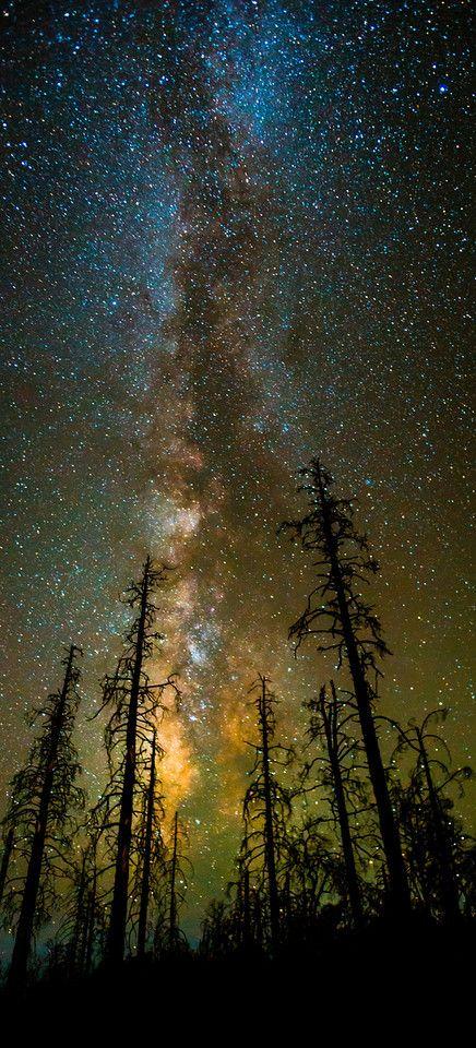 Night Photography - tobyharriman