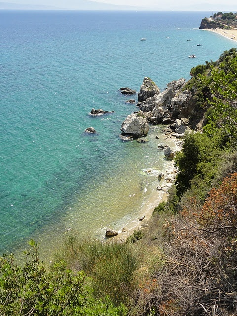 Greece - Pelion - Platania
