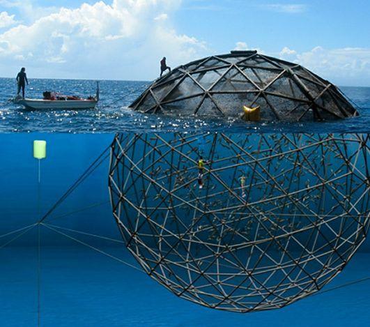 wilfried Ellmer Oceanic Busness Alliance, http://yook3.com, Key Player Network, http://latinindustry.biz, http://concretesubmarine.com.