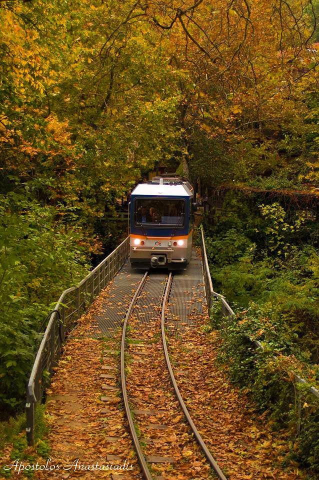 Train in the forest Odontotos, Kalavryta | Greece