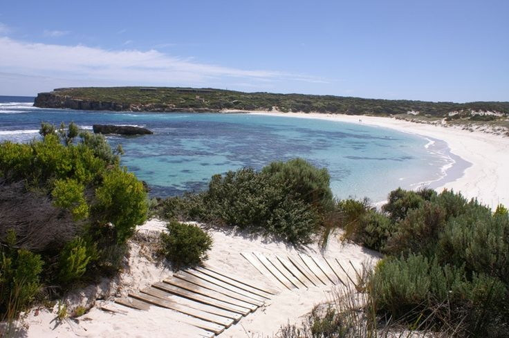 The Hanson Bay Wildlife Sanctuary is situated on the western end of Kangaroo Island. We have six self-contained beach-side holiday cabins as well as many opportunities to see the native wildlife.