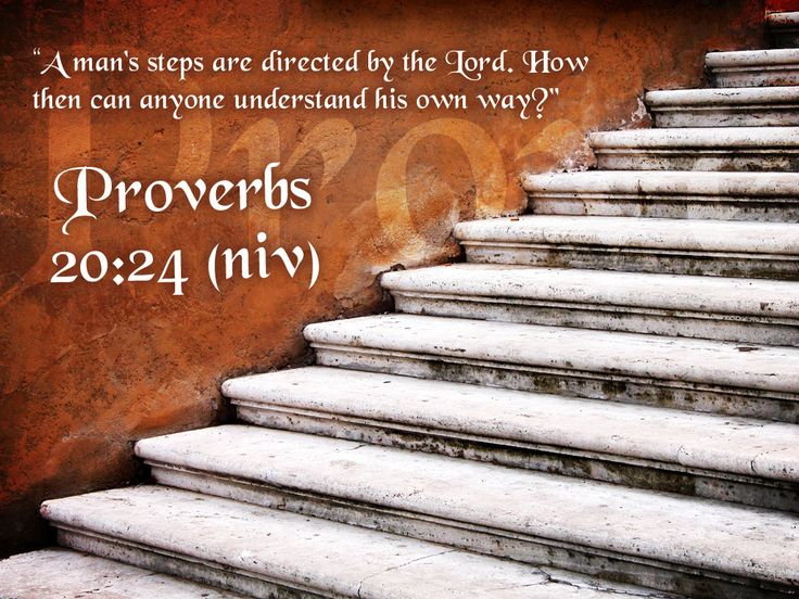 Bible Verses in Pictures Proverbs 20 24
