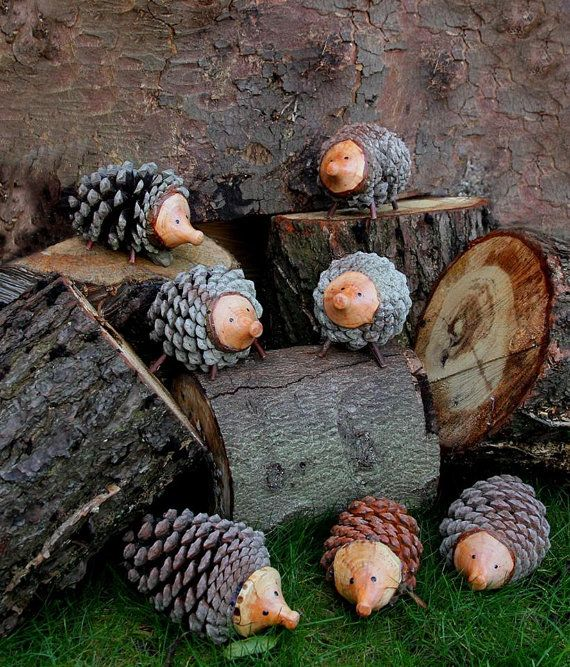 I made these loveable hedgehogs out of locally gathered pine cones myself and the wife collected. Super cute and extremely friendly. No need for