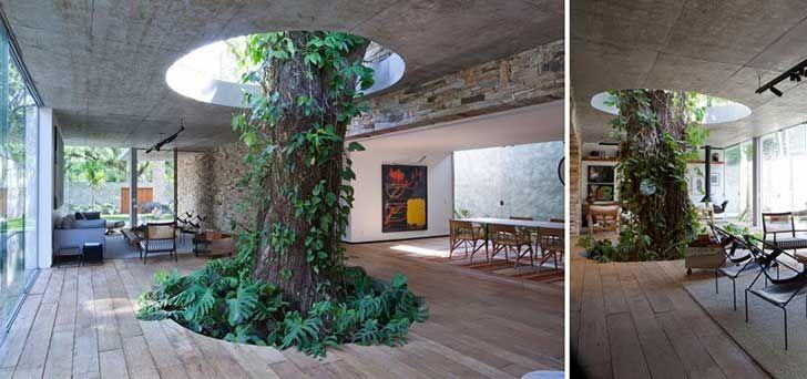 architecture-around-the-trees-4__880