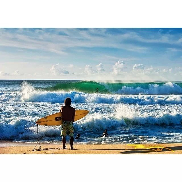 El Nino 2015 update by OSE - http://surfinglessonsoahu.blogspot.com/2016/05/el-nino-2015-update-by-ose.html