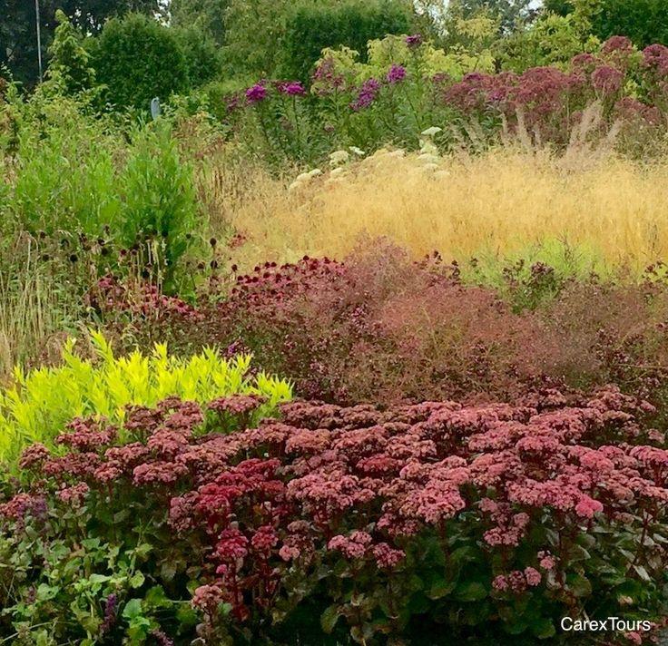 827 best piet oudolf images on pinterest landscape for Planting the natural garden piet oudolf