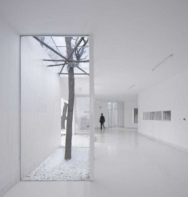 Pabellón Mirador / TAO – Trace Architecture Office