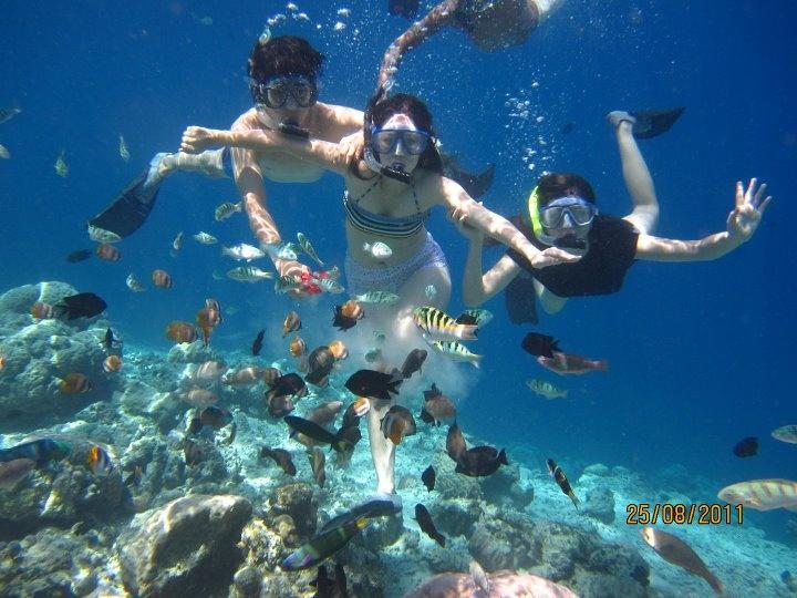 Snorkeling in Bunaken, Manado