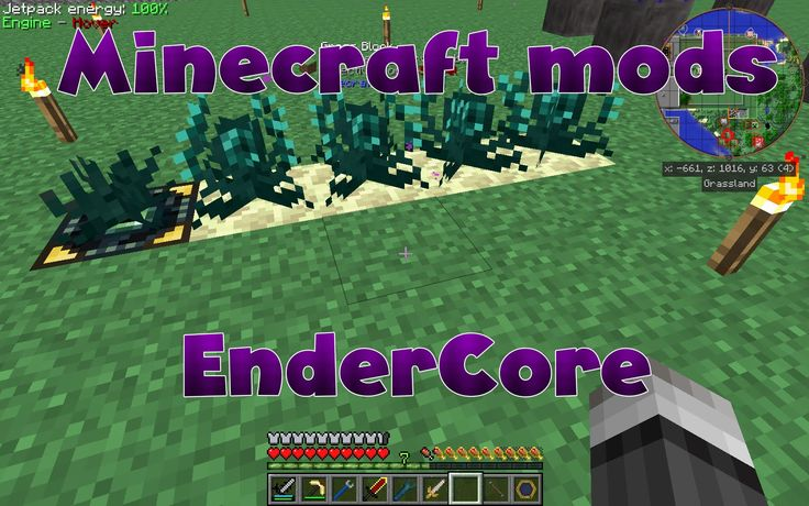 Endercore is a simple library mod intended for a number of other mods, most of which were authored by CrazyPants. It was very recently updated to be compat