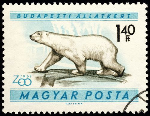 stamp hungary 1961 Ursus maritimus Eisbär polar bear by pixelschubser.de, via Flickr