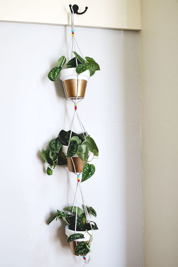 Gold Dipped Hanging Planters
