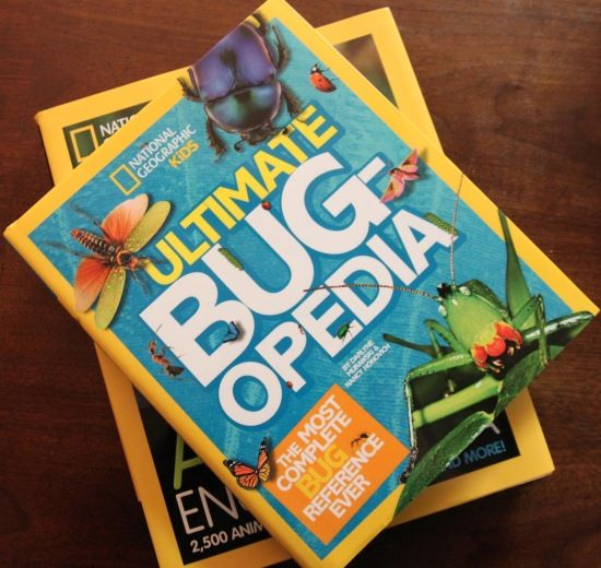 When Zulily asked me to review two National Geographic books, I had no idea they would help my daughter begin to get past her fear of wasps. For real. Click through to read all about our creative adventures with these animal encyclopedias.