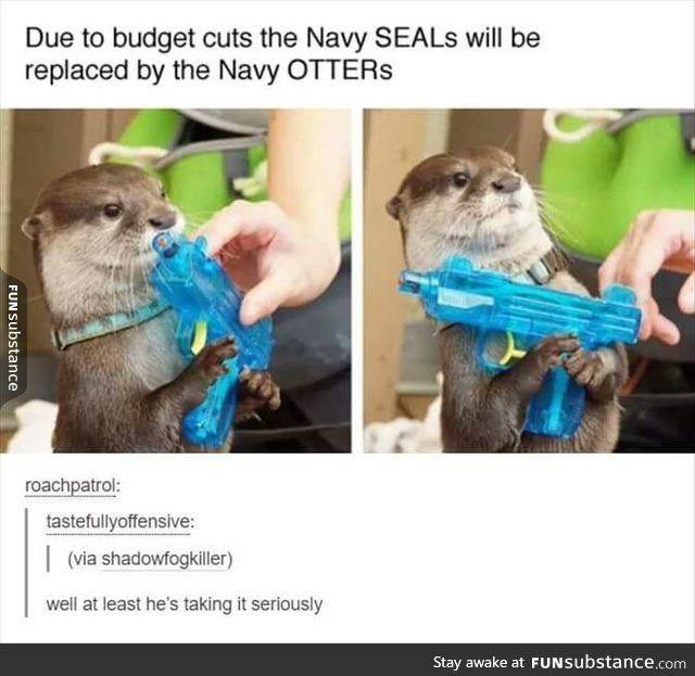 You go, little otter.