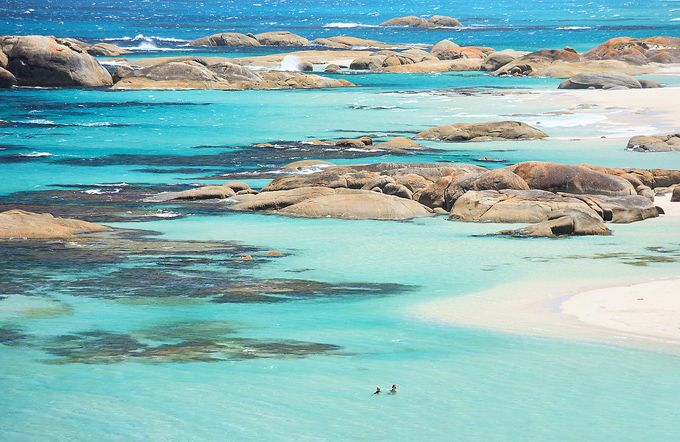 William Bay, Western Australia: Williams Bays, Globes, Australia Travel, Beautiful Places, Rocks Pools, National Parks, Green Pools, Amazing Places, Westerns Australia
