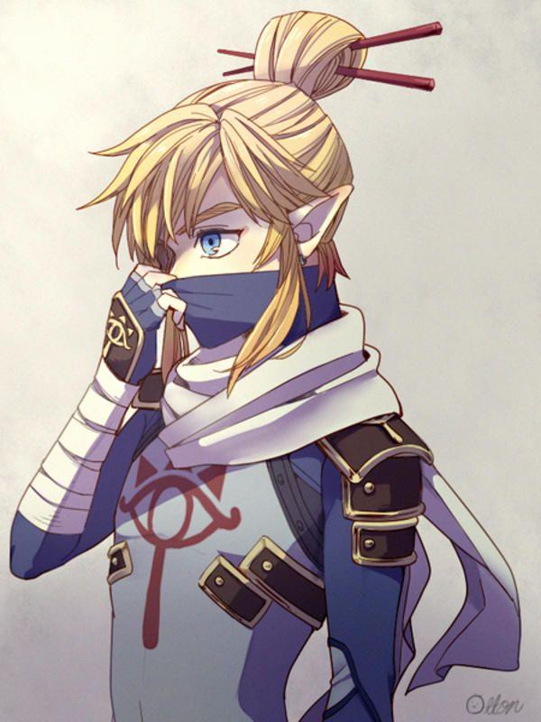 シーカーリンク (Sheik Link) | The Legend of Zelda: Breath of the Wild | Know Your Meme