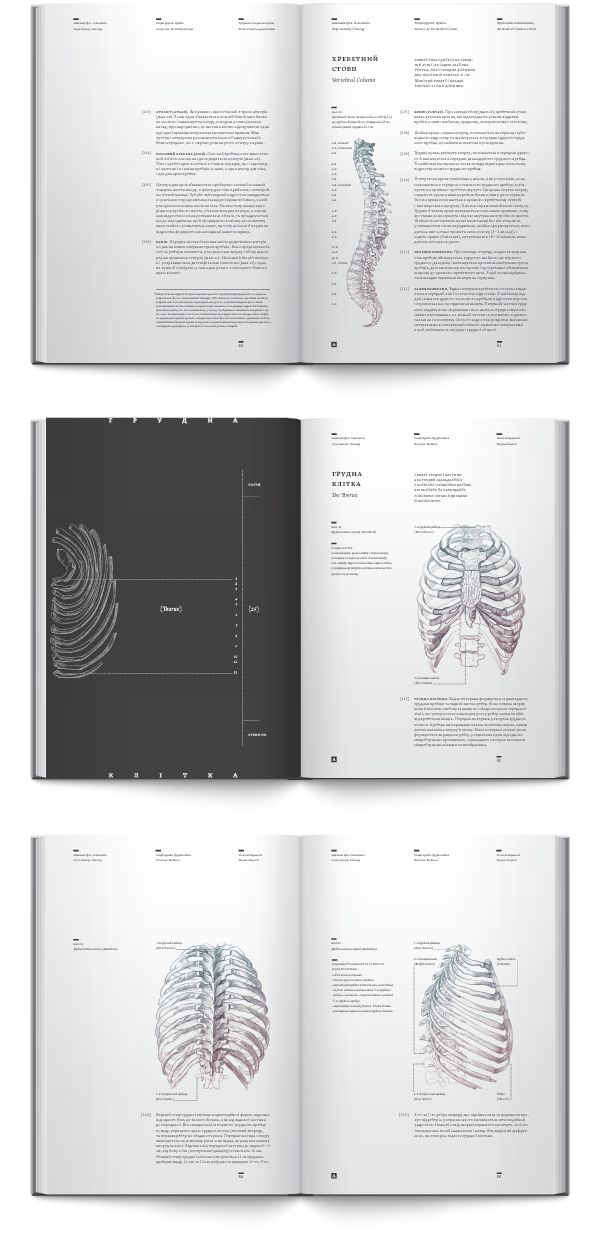 Anatomy book. Osteology by Irene Shkarovska, via Behance