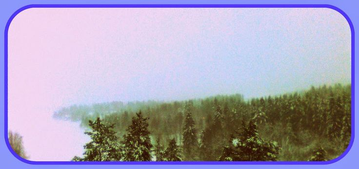 Wintery Snowing View from Siltavahti Jan 16th 2015 Card