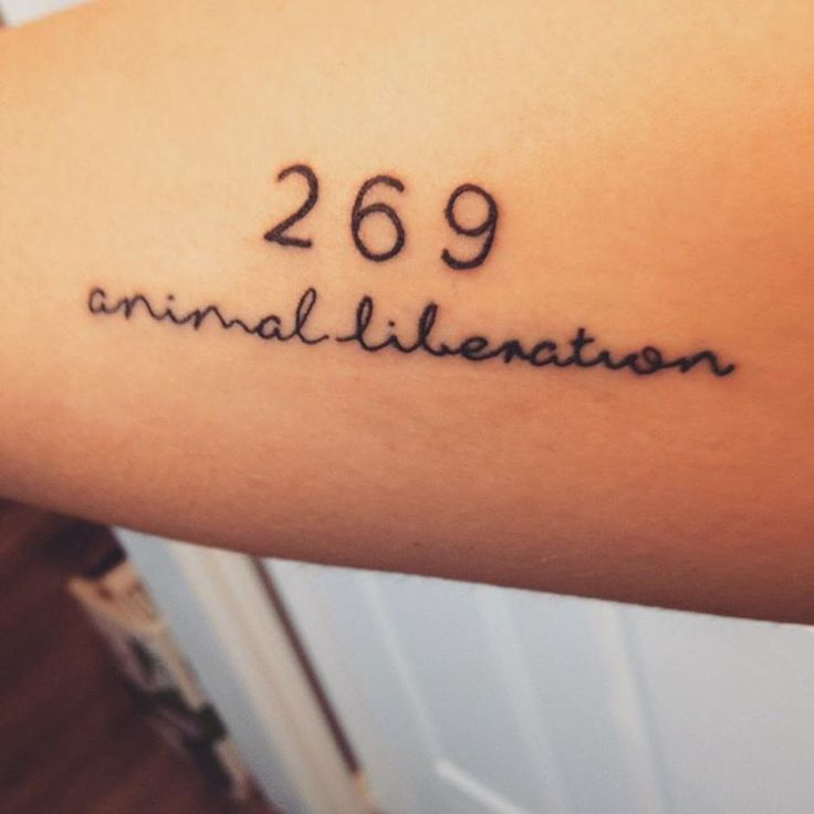 66 Best Vegan Tattoo Ideas Quotes Images On Pinterest: 424 Best Tattoos (ideas For A Project) Images On Pinterest