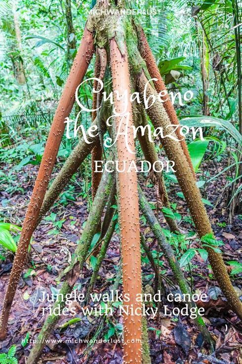 Cuyabeno Nature Reserve Tour with Nicky Lodge in the Ecuadorean Amazon | MichWanderlust #Ecuador #Amazon